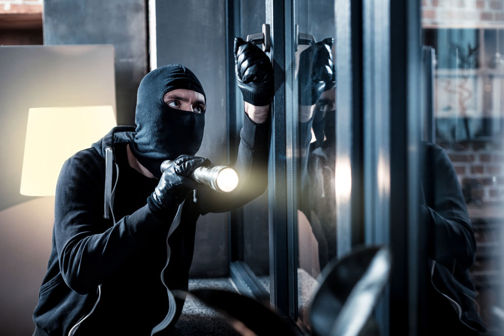 Security Patrol - Deter Thieves and Vandals